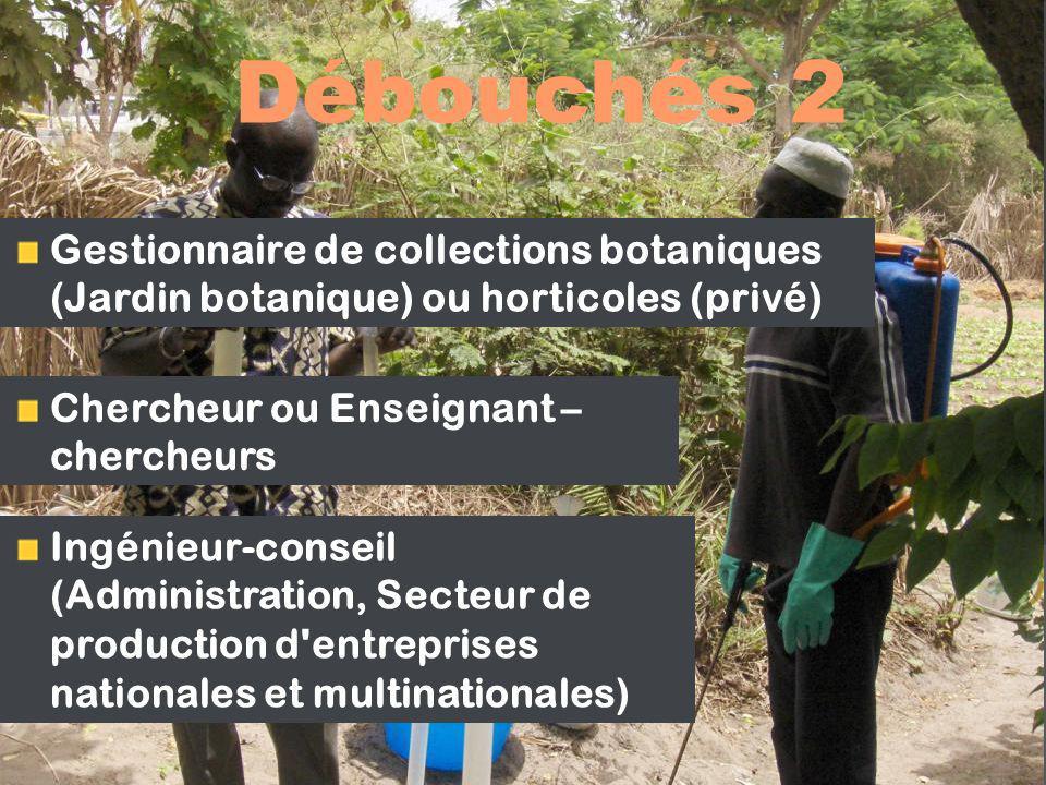 Débouchés 2 Gestionnaire de collections botaniques (Jardin botanique) ou horticoles (privé) Chercheur ou Enseignant – chercheurs.