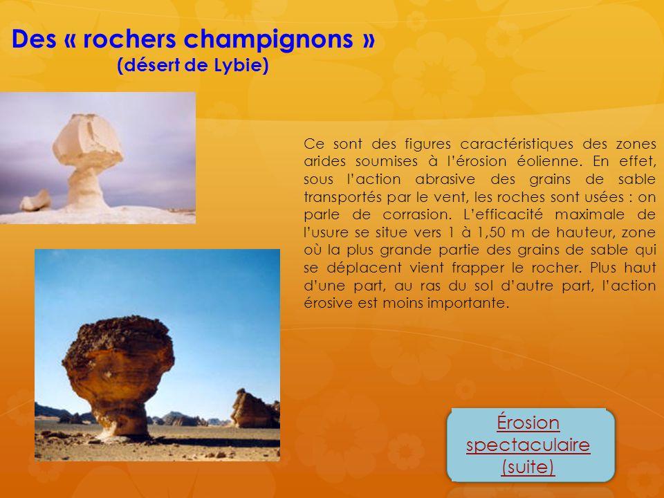 Des « rochers champignons »