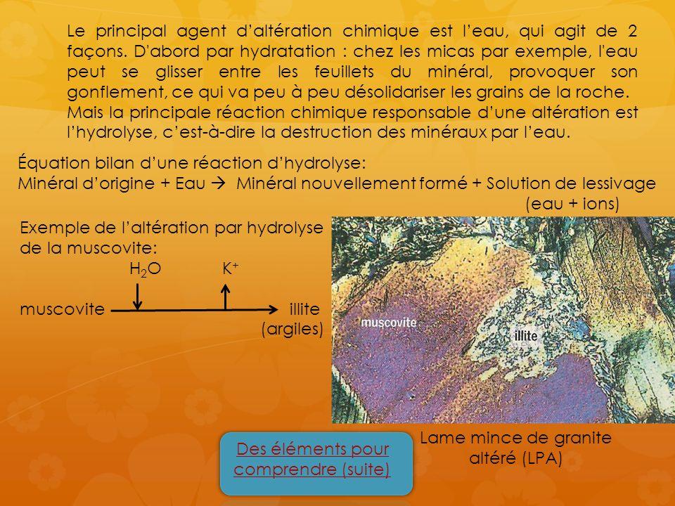 Équation bilan d'une réaction d'hydrolyse:
