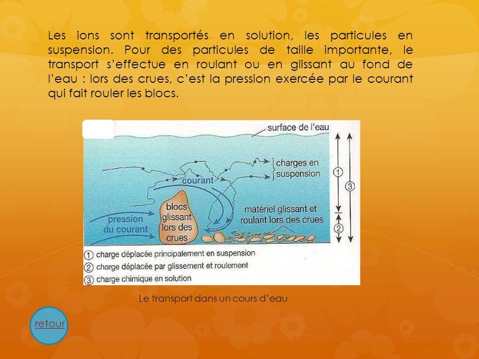 Les ions sont transportés en solution, les particules en suspension