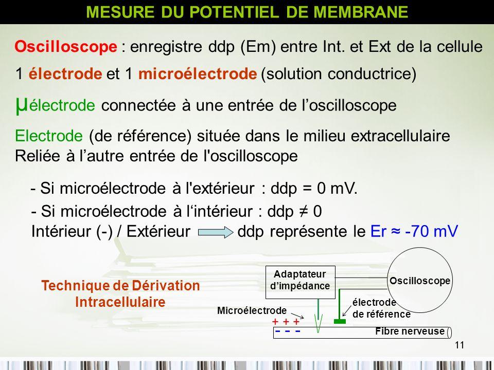 µélectrode connectée à une entrée de l'oscilloscope