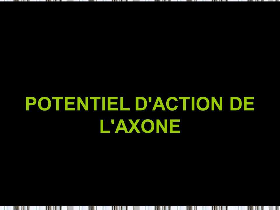 POTENTIEL D ACTION DE L AXONE
