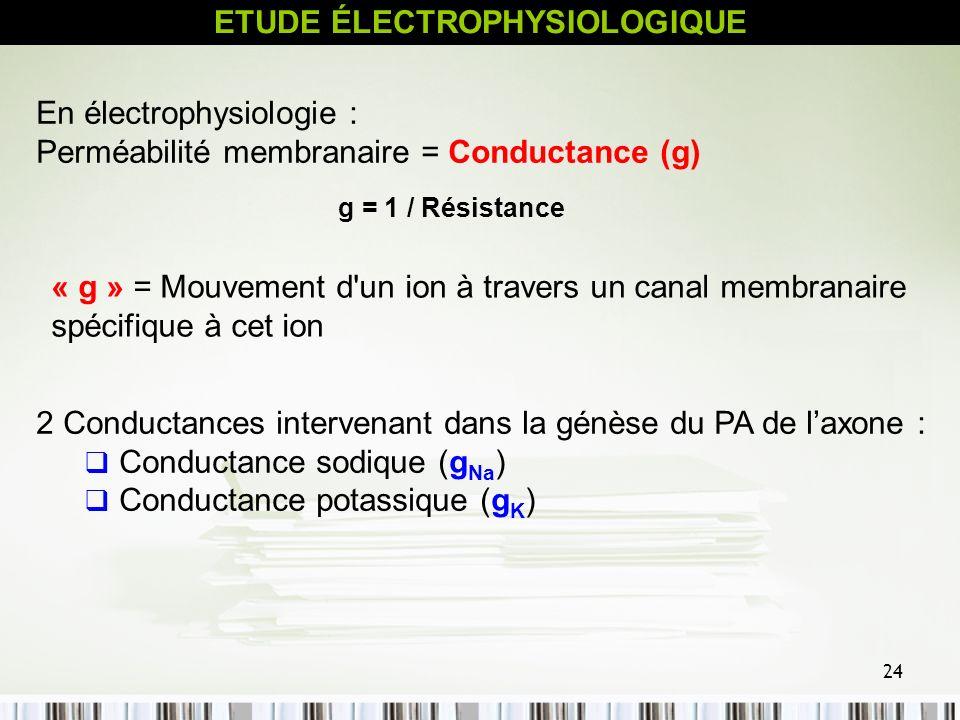 ETUDE ÉLECTROPHYSIOLOGIQUE