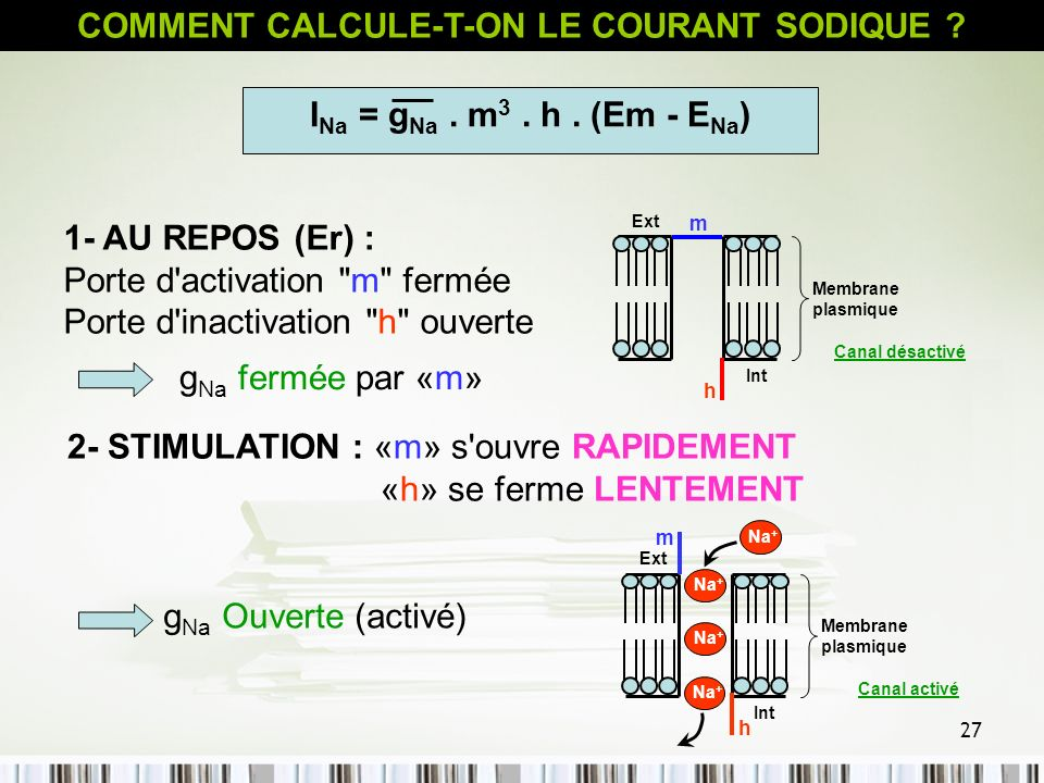 COMMENT CALCULE-T-ON LE COURANT SODIQUE