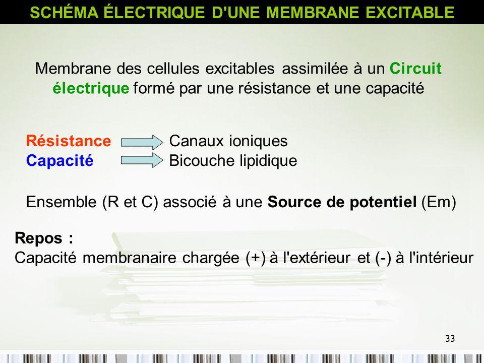 SCHÉMA ÉLECTRIQUE D UNE MEMBRANE EXCITABLE