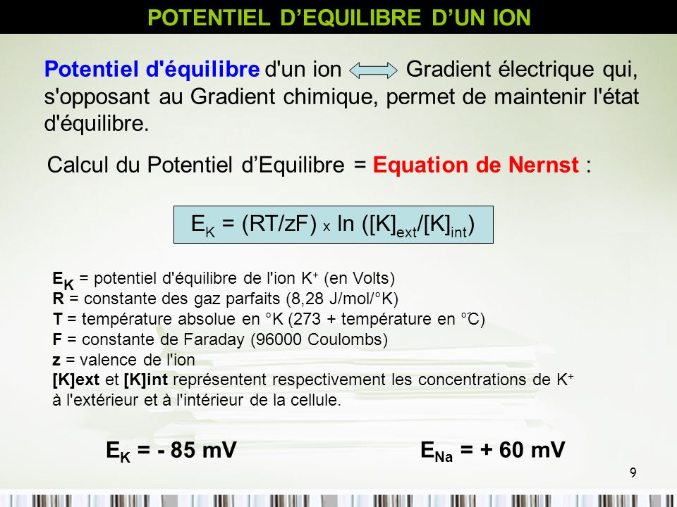 POTENTIEL D'EQUILIBRE D'UN ION