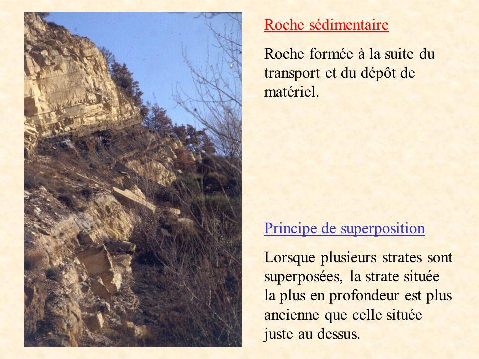 Roche sédimentaire Roche formée à la suite du transport et du dépôt de matériel. Principe de superposition.