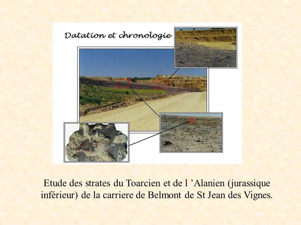Etude des strates du Toarcien et de l 'Alanien (jurassique inférieur) de la carriere de Belmont de St Jean des Vignes.