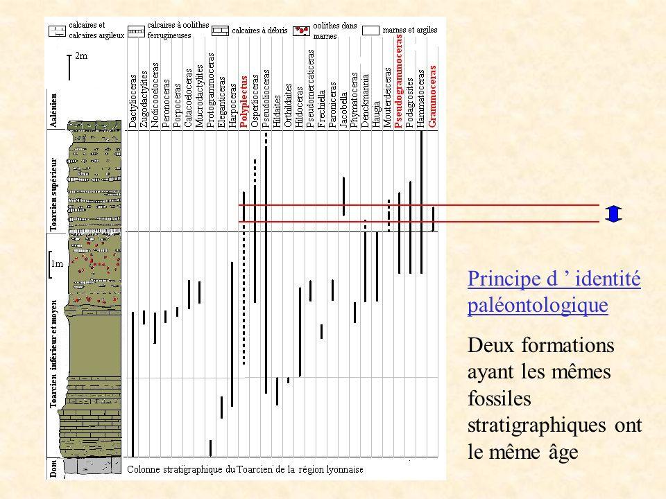 Principe d ' identité paléontologique