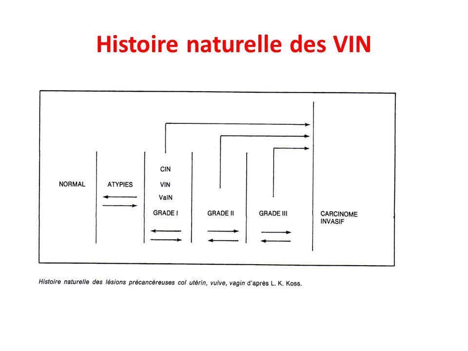 Histoire naturelle des VIN