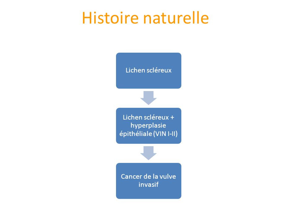 Histoire naturelle Lichen scléreux