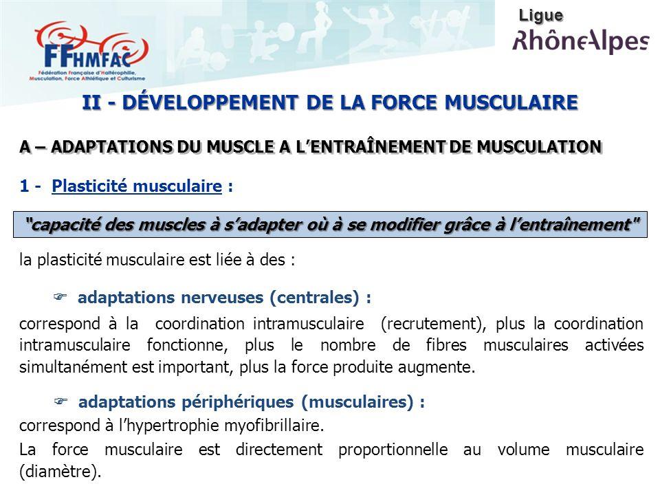 II - DÉVELOPPEMENT DE LA FORCE MUSCULAIRE