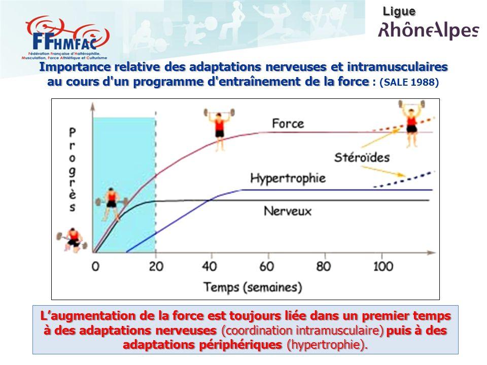 Ligue Importance relative des adaptations nerveuses et intramusculaires au cours d un programme d entraînement de la force : (SALE 1988)
