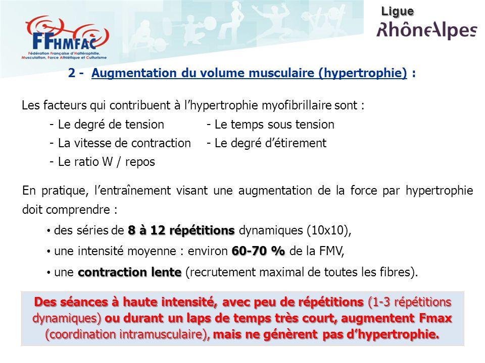 Ligue 2 - Augmentation du volume musculaire (hypertrophie) : Les facteurs qui contribuent à l'hypertrophie myofibrillaire sont :