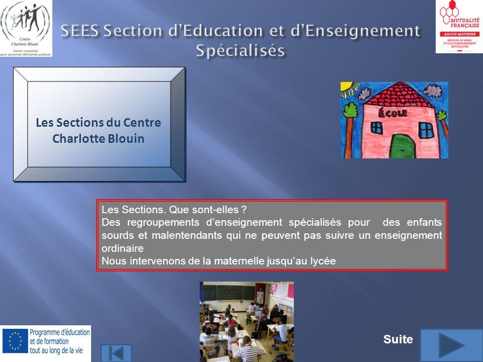 SEES Section d'Education et d'Enseignement Spécialisés