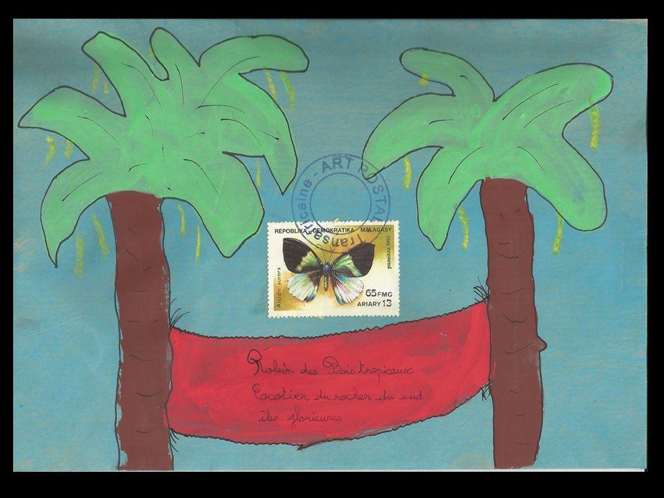 Cher Robin des bois tropicaux, Je suis un beau papillon, si coloré que le coua huppé et le caméléon rêvent de m'avaler… Pourrais-je voler jusqu'à ton archipel pour survivre .