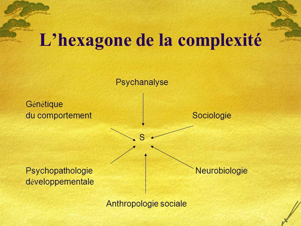 L'hexagone de la complexité