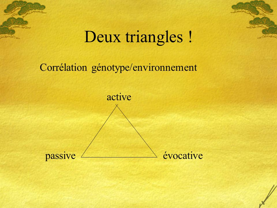 Deux triangles ! Corrélation génotype/environnement active