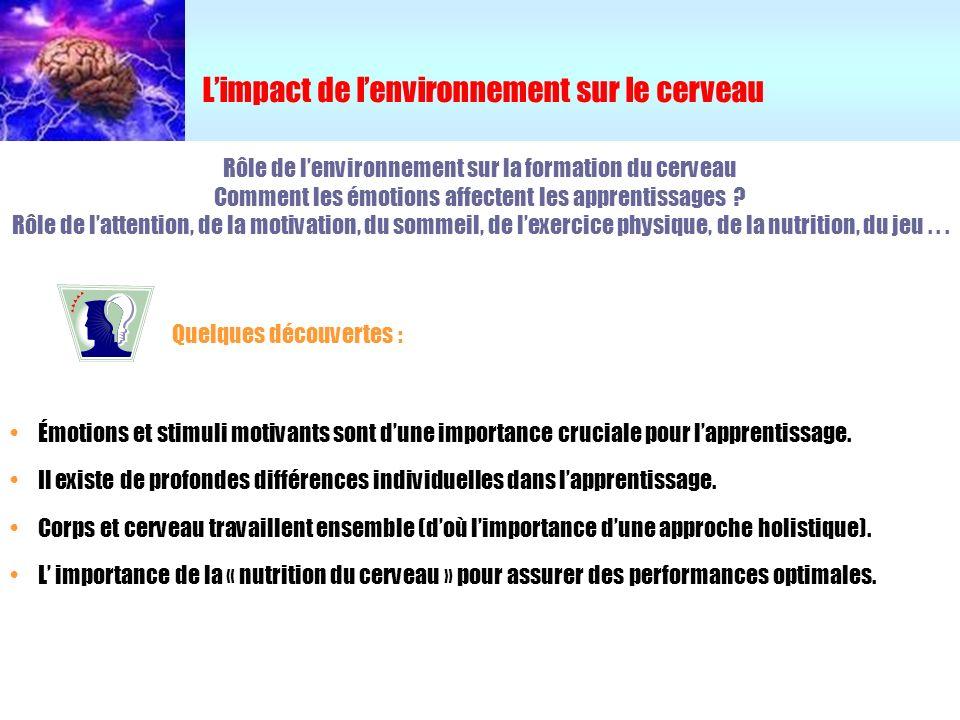 L'impact de l'environnement sur le cerveau