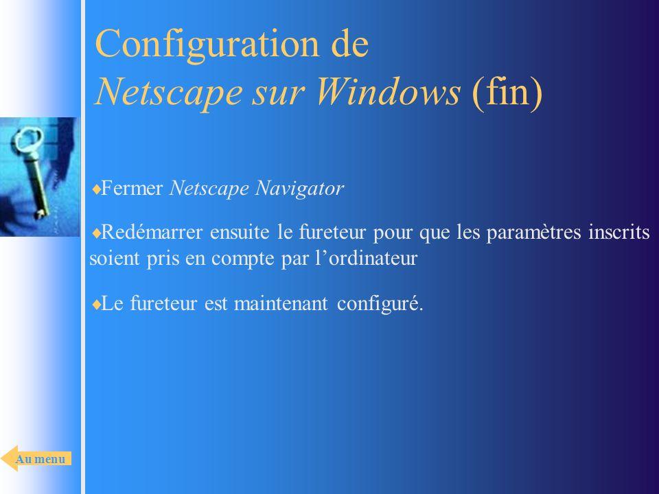 Configuration de Netscape sur Windows (fin)
