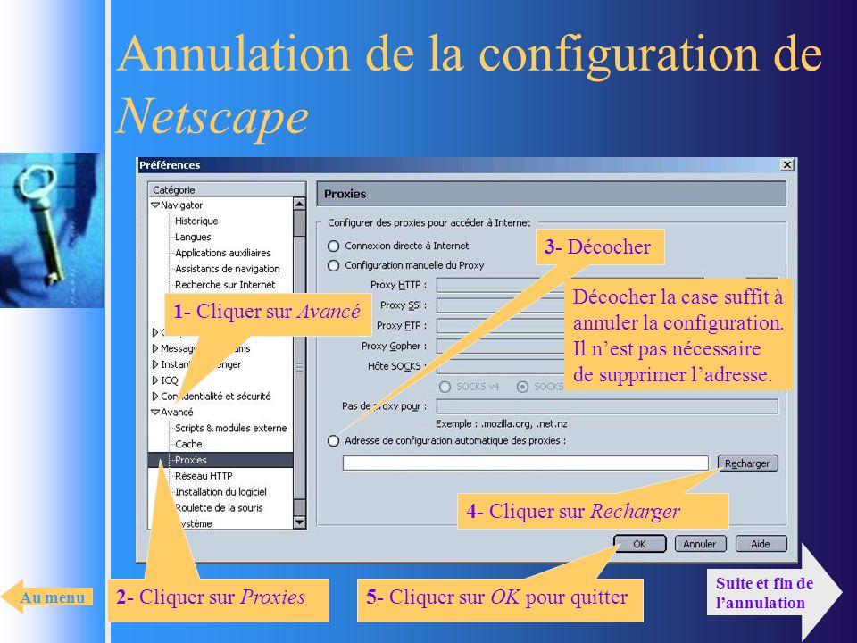 Annulation de la configuration de Netscape