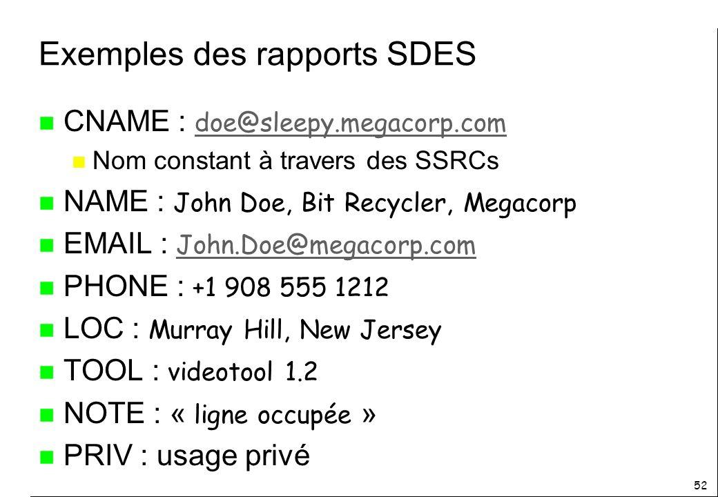 Exemples des rapports SDES