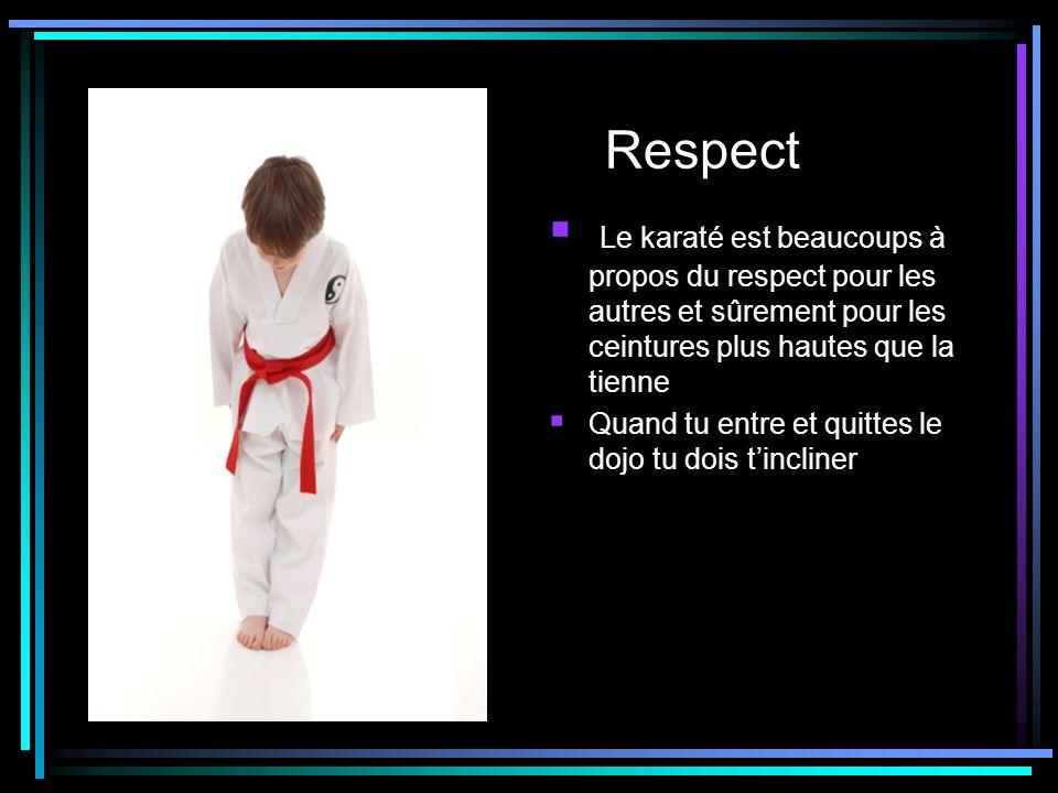 Respect Le karaté est beaucoups à propos du respect pour les autres et sûrement pour les ceintures plus hautes que la tienne.