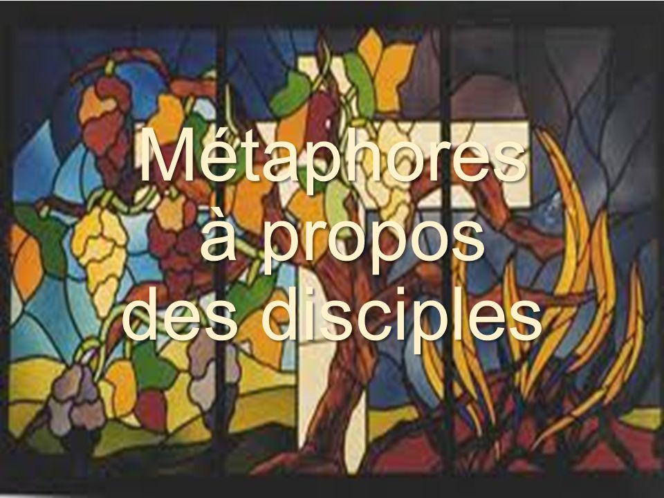 Métaphores à propos des disciples