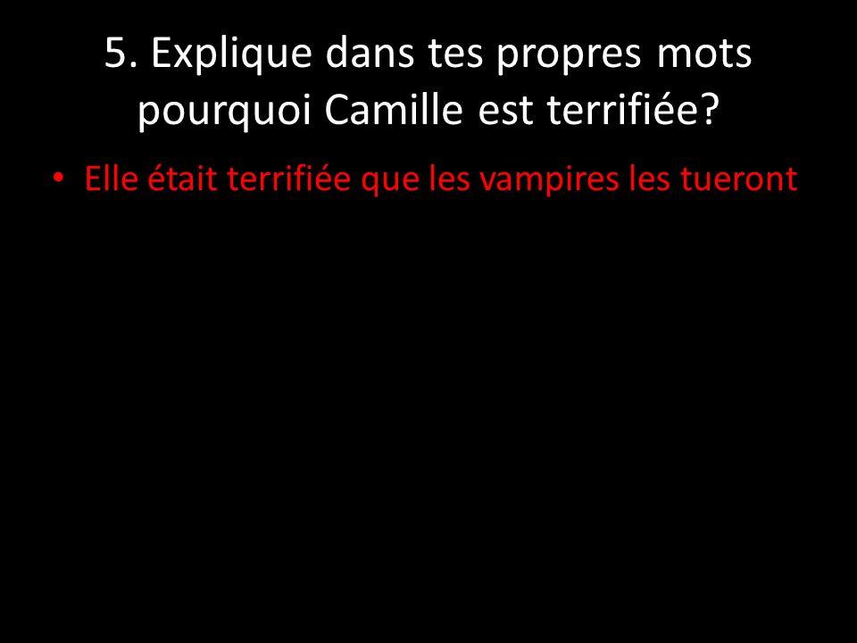 5. Explique dans tes propres mots pourquoi Camille est terrifiée