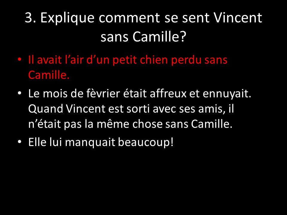 3. Explique comment se sent Vincent sans Camille
