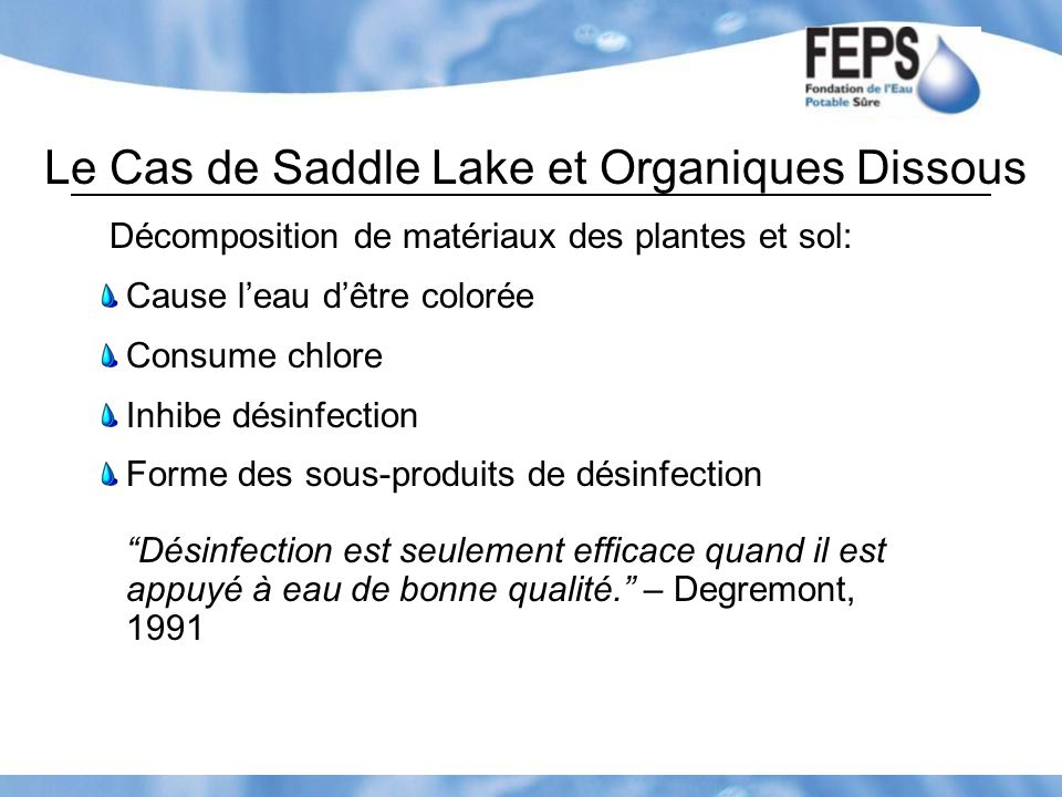 Le Cas de Saddle Lake et Organiques Dissous