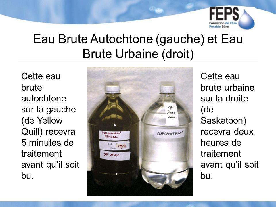 Eau Brute Autochtone (gauche) et Eau Brute Urbaine (droit)
