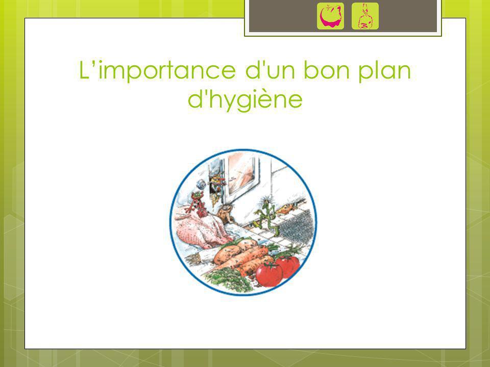 L'importance d un bon plan d hygiène