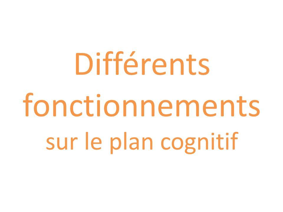 Différents fonctionnements sur le plan cognitif