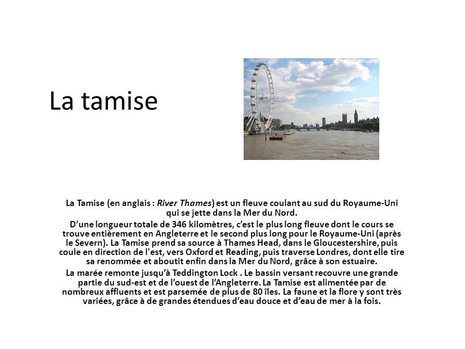 La tamise La Tamise (en anglais : River Thames) est un fleuve coulant au sud du Royaume-Uni qui se jette dans la Mer du Nord.