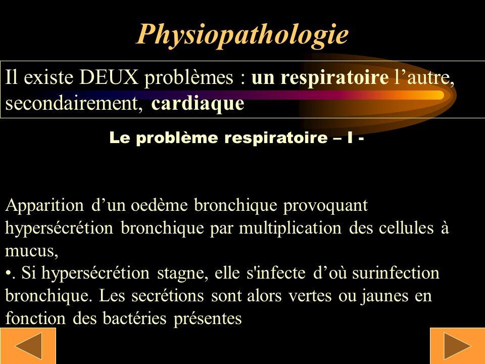 Le problème respiratoire – I -