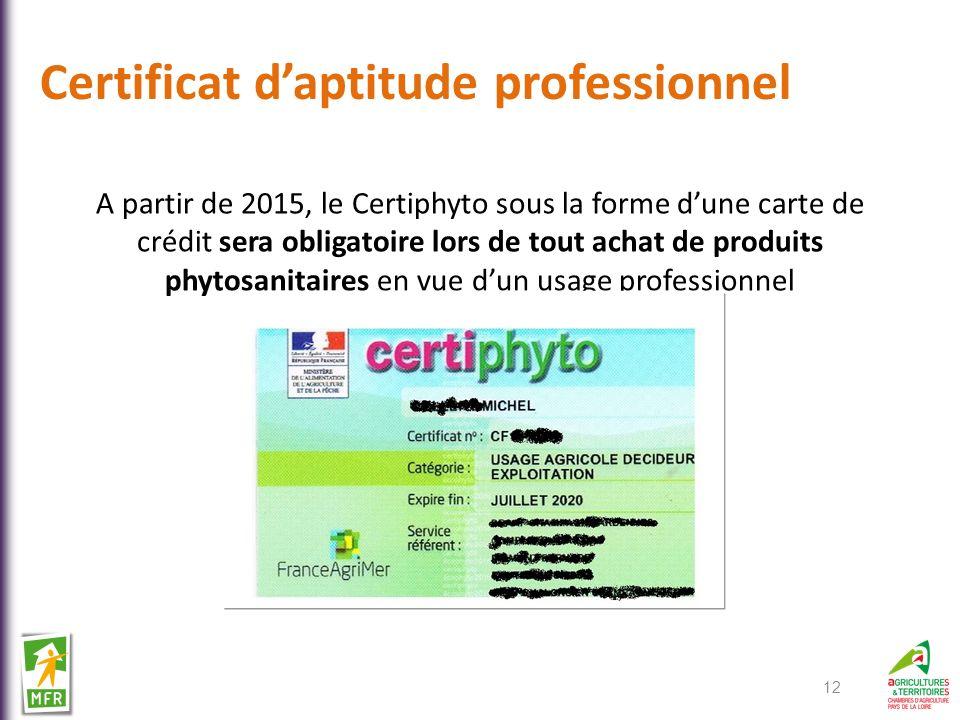 Certificat d'aptitude professionnel