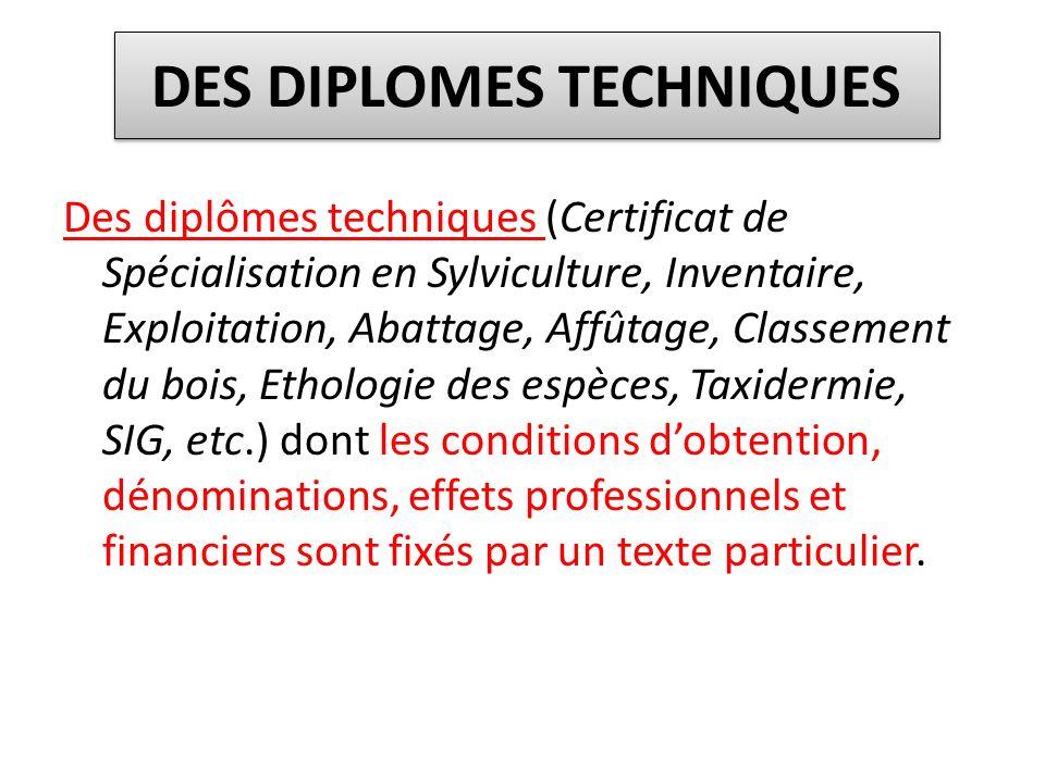 DES DIPLOMES TECHNIQUES