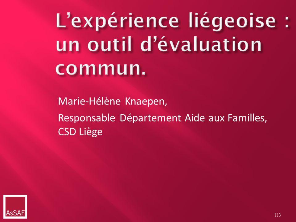 L'expérience liégeoise : un outil d'évaluation commun.