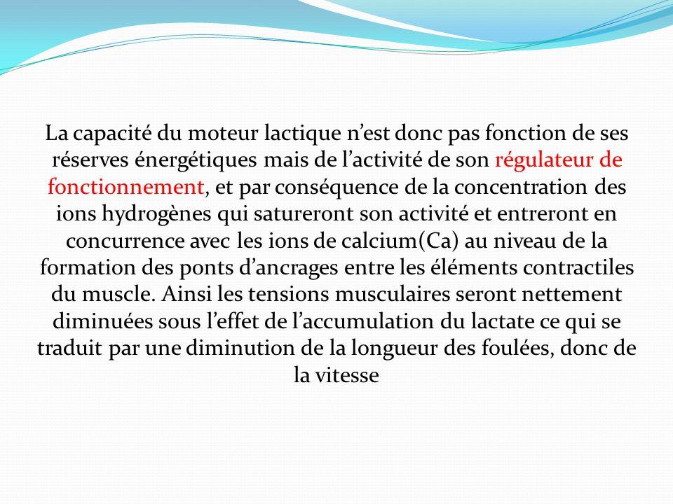 La capacité du moteur lactique n'est donc pas fonction de ses réserves énergétiques mais de l'activité de son régulateur de fonctionnement, et par conséquence de la concentration des ions hydrogènes qui satureront son activité et entreront en concurrence avec les ions de calcium(Ca) au niveau de la formation des ponts d'ancrages entre les éléments contractiles du muscle.