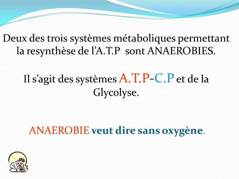 Il s'agit des systèmes A.T.P-C.P et de la Glycolyse.