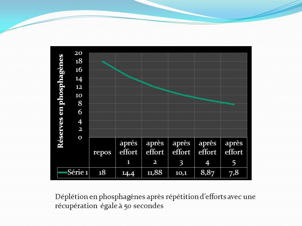 Déplétion en phosphagènes après répétition d'efforts avec une récupération égale à 50 secondes