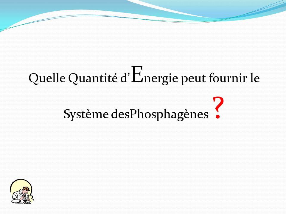 Quelle Quantité d'Energie peut fournir le Système desPhosphagènes