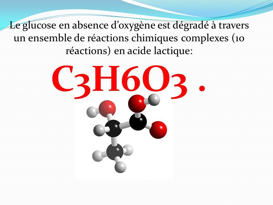 Le glucose en absence d'oxygène est dégradé à travers un ensemble de réactions chimiques complexes (10 réactions) en acide lactique: