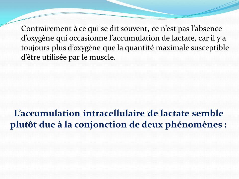 Contrairement à ce qui se dit souvent, ce n'est pas l'absence d'oxygène qui occasionne l'accumulation de lactate, car il y a toujours plus d'oxygène que la quantité maximale susceptible d'être utilisée par le muscle.