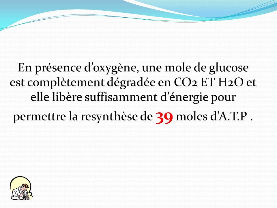 En présence d'oxygène, une mole de glucose est complètement dégradée en CO2 ET H2O et elle libère suffisamment d'énergie pour permettre la resynthèse de 39 moles d'A.T.P .