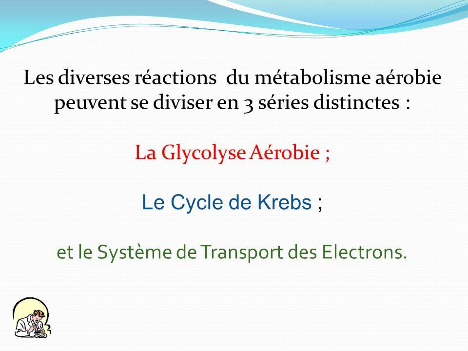 et le Système de Transport des Electrons.