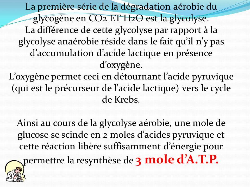 La première série de la dégradation aérobie du glycogène en CO2 ET H2O est la glycolyse.