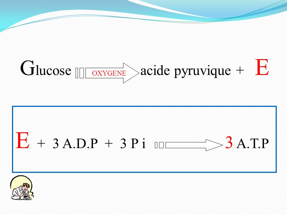 Glucose acide pyruvique + E