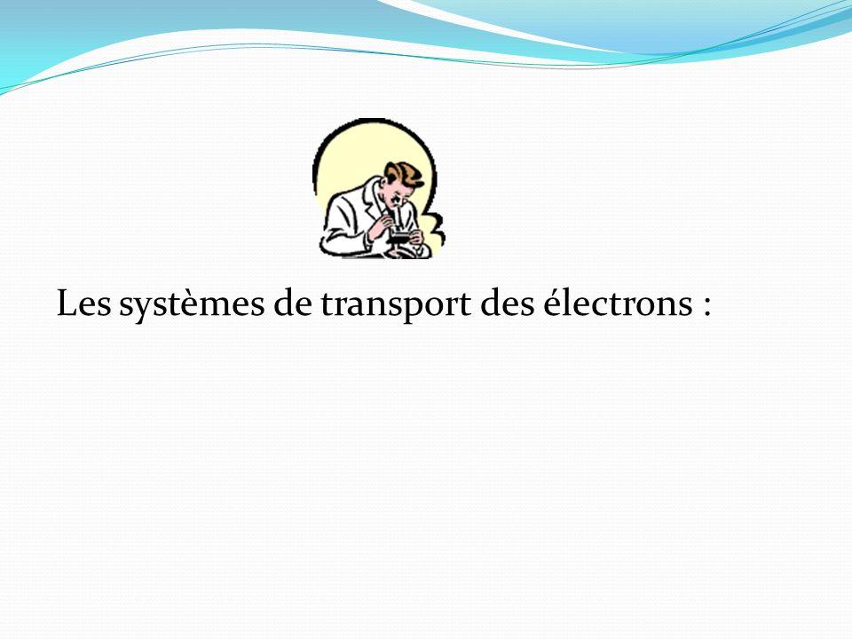 Les systèmes de transport des électrons :